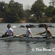 The Rowing Regatta-1